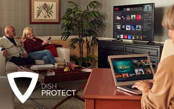 Get DISH Protect from A-1 Satellite Center, Inc. in Donalsonville, Georgia